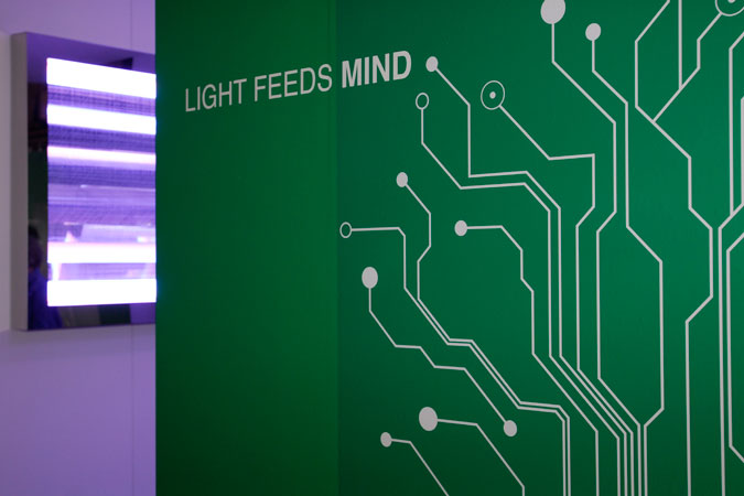 designers' saturday_light feeds mind