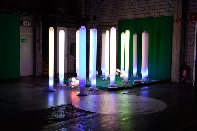 designers' saturday_light feeds nature